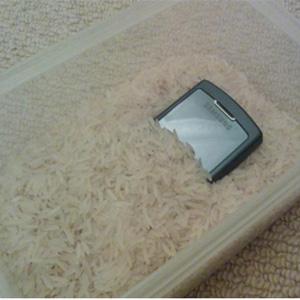 گوشی خیس دفن شده در برنج